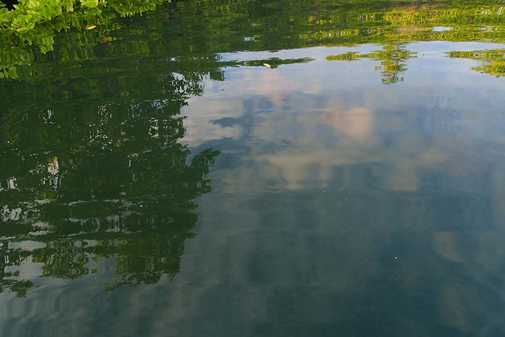 Бухта Черной Черепахи