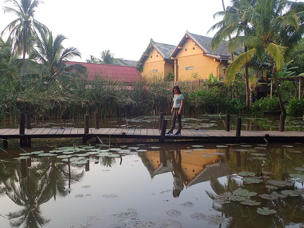 Manda de Laos