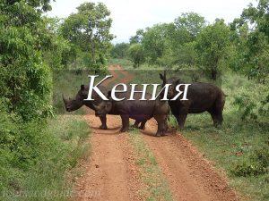 Пункт назначения Кения