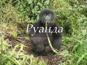 Пункт назначения Руанда