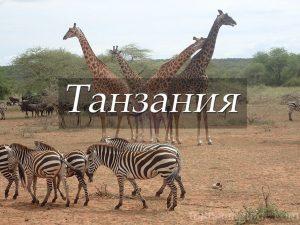 Пункт назначения Танзания